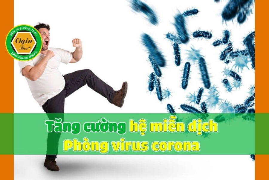 tăng cường hệ miễn dịch phòng ngừa corona